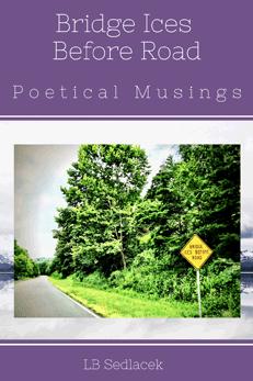 Bridge Ices Before Road: Poetical Musings by LB Sedlacek